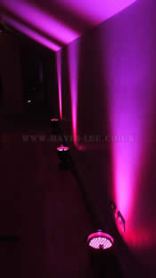 pink uplighting at white hart oldham